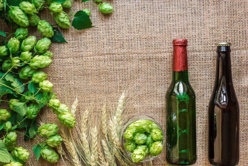 Gröna nya flygturer med vete och två flaskor av öl som kopieringsutrymme inramar textområde på säckvävbakgrund royaltyfri foto