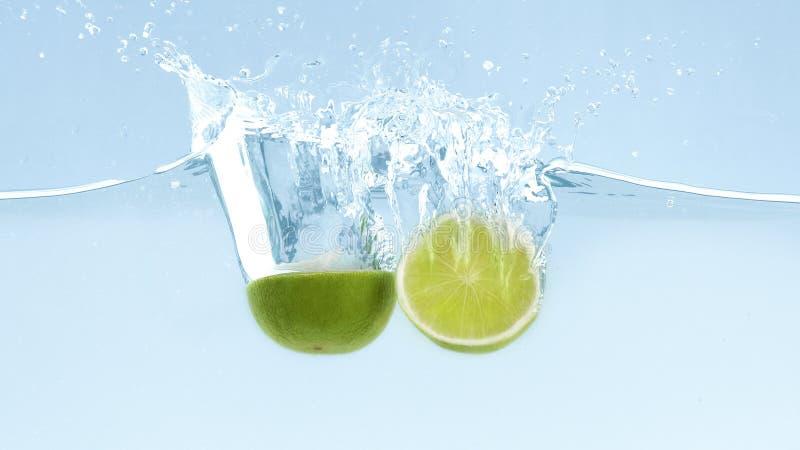 Gröna nya limefrukter med klar vattenfärgstänk och droppar royaltyfri bild