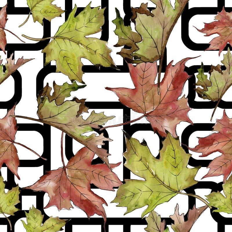 Gröna och röda lönnlöv för vattenfärg Blom- lövverk för bladväxtbotanisk trädgård Seamless bakgrund mönstrar royaltyfri illustrationer