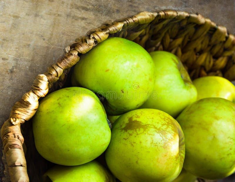Gröna organiska äpplen i vide- korg på den lantliga trätabellen i solljusläckor Bantar den baserade sunda växten för lokal jordbr royaltyfri bild