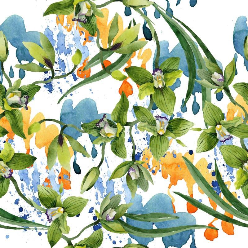 Gröna orkidéblommor för vattenfärg Blom- botanisk blomma Seamless bakgrund mönstrar vektor illustrationer