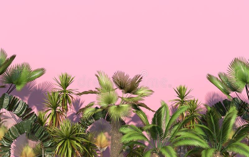 Gröna palmträd och tropiska exotiska växter på en rosa bakgrund med kopieringsutrymme Begreppsmässig idérik illustration framf?ra stock illustrationer
