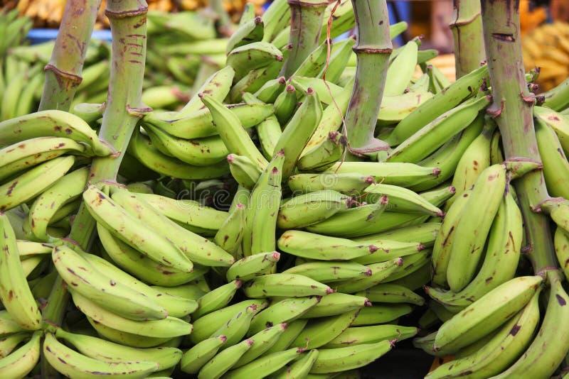 gröna plantains royaltyfria foton