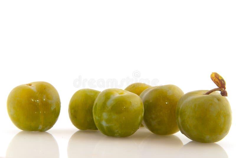 gröna plommoner arkivfoton