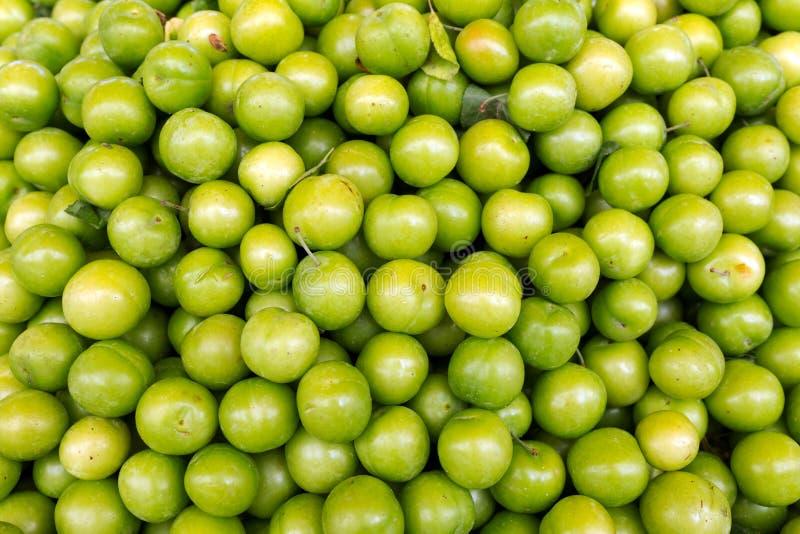 Gröna plommoner, bakgrund fotografering för bildbyråer