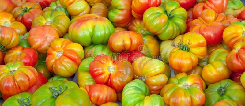 gröna röda tomater royaltyfria foton