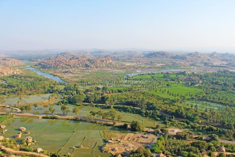 Gröna risfält, gömma i handflatan och floden Tungabhadra i byn av Hampi Palmträd solen, risfält Tropiskt exotiskt arkivbilder