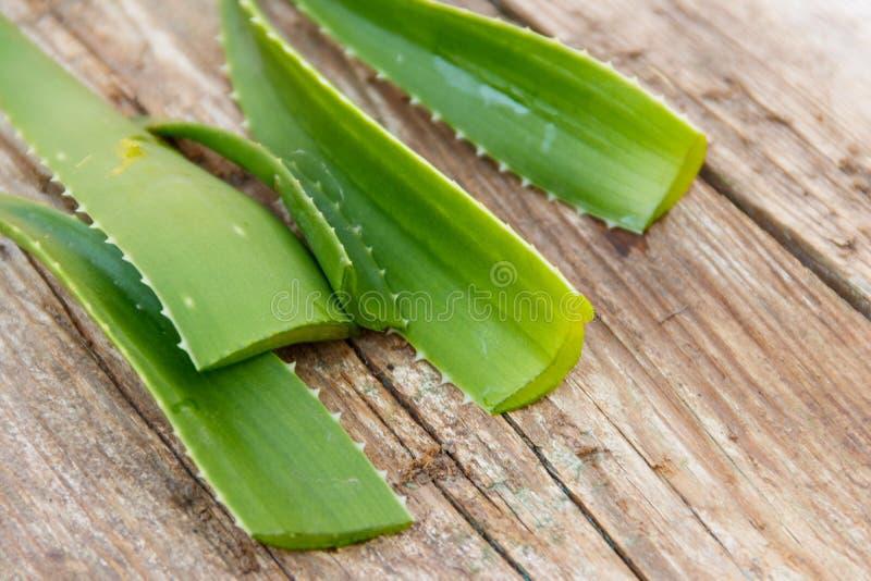 Gröna sidor av den aloevera växten på lantlig träbakgrund royaltyfri fotografi
