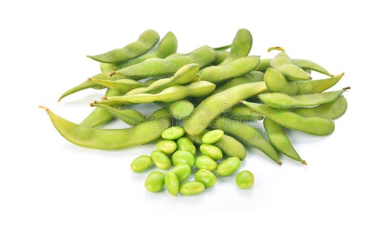 gröna soybeans royaltyfri fotografi