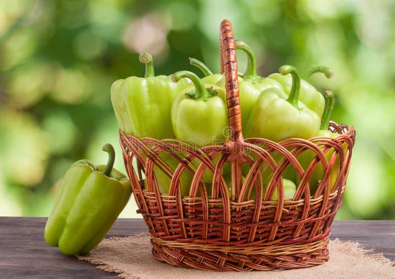 Gröna spanska peppar i en vide- korg på trätabellen med suddig bakgrund royaltyfri bild