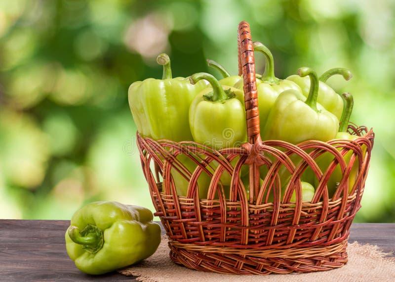 Gröna spanska peppar i en vide- korg på trätabellen med suddig bakgrund arkivbilder