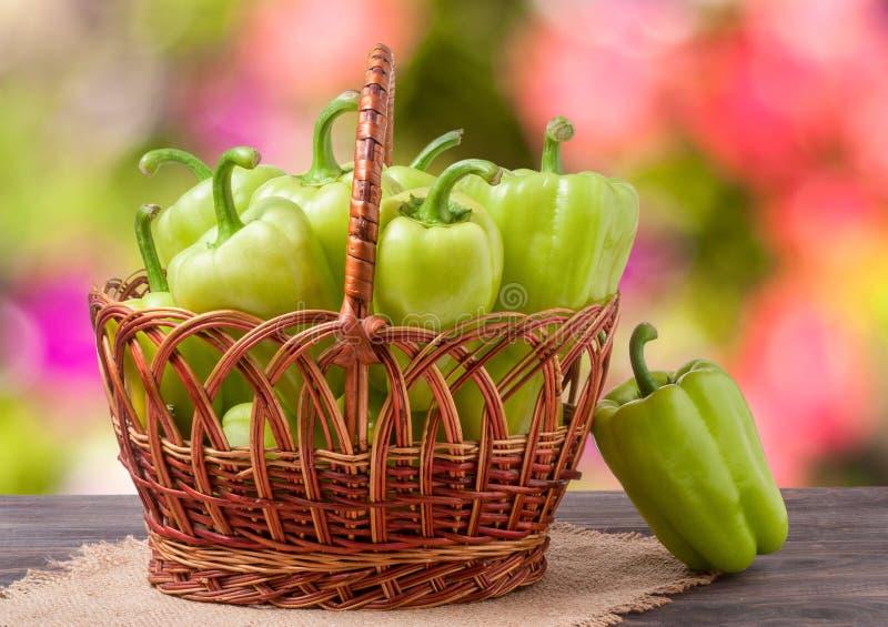 Gröna spanska peppar i en vide- korg på trätabellen med suddig bakgrund arkivfoto