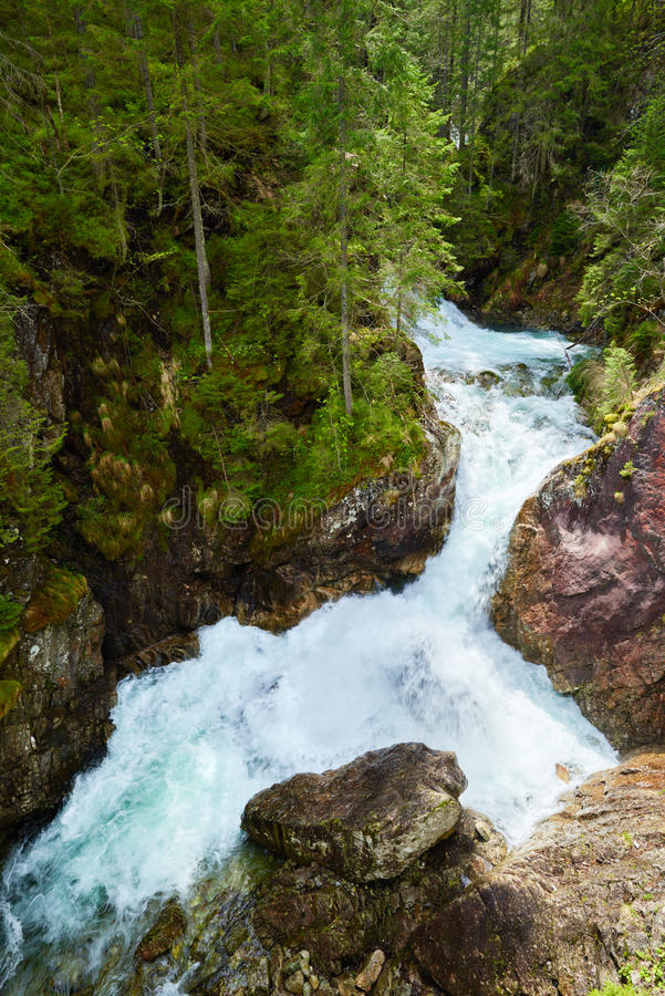 Gröna Tatra för vatten för skogvattenfallström berg Carpathians arkivfoton