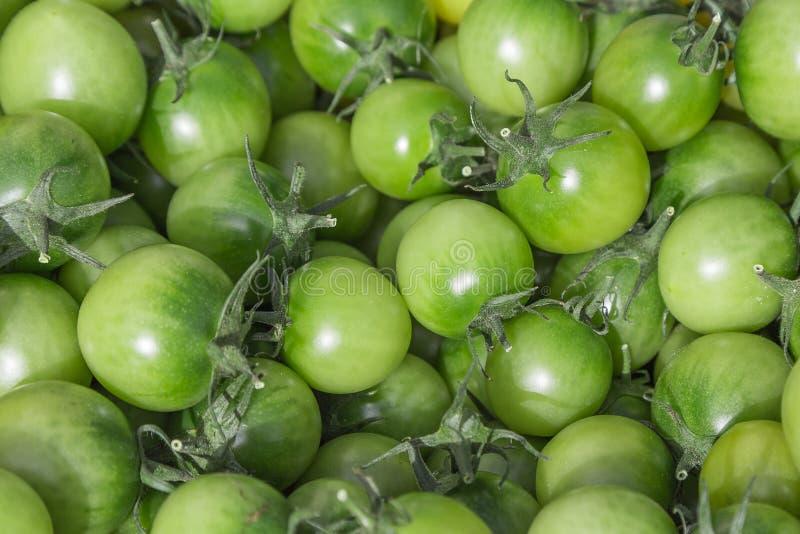 Gröna tomater i en korg på bönder för en frukt söndag marknadsför Detaljerat slut upp med livliga skinande färger Begrepp för org arkivbilder