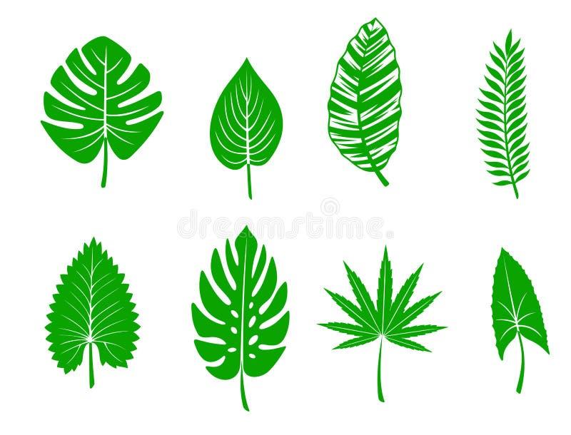 Gröna tropiska leaves royaltyfri illustrationer