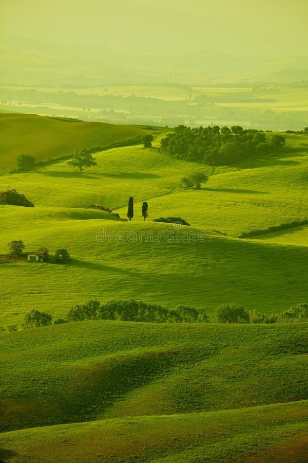 Gröna Tuscany kullar arkivfoton