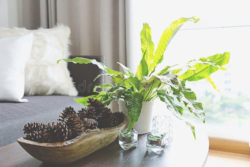 Gröna växter som dekorerar ett rum fotografering för bildbyråer