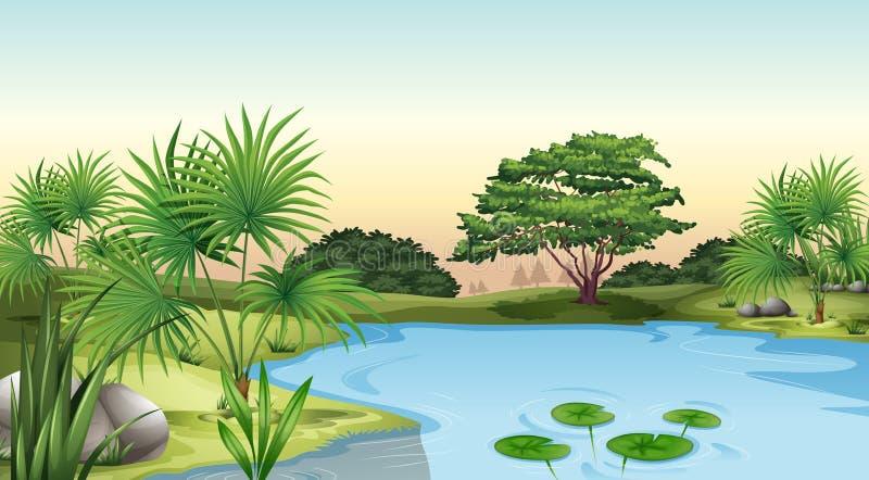 Gröna växter som omger dammet royaltyfri illustrationer