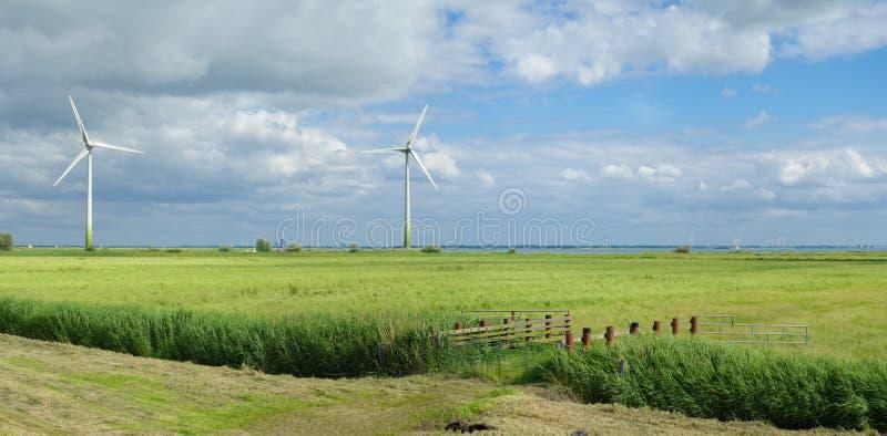 Gröna windmills royaltyfria bilder