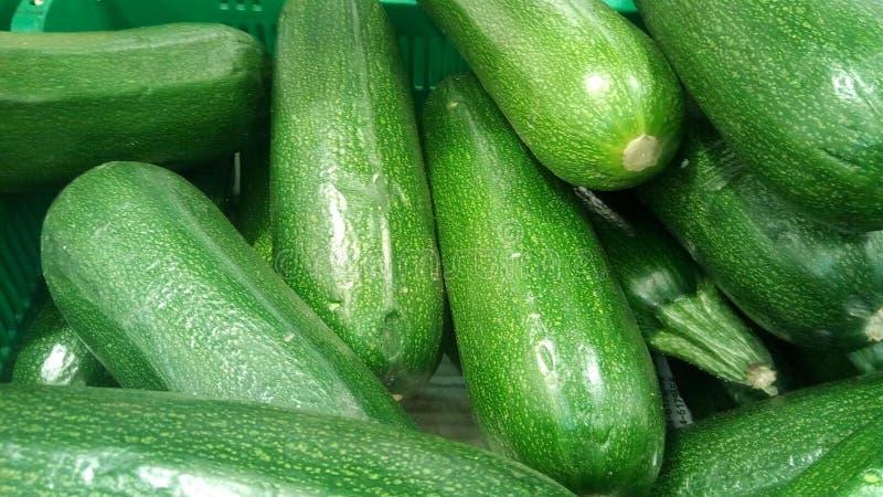 Gröna zucchinier zucchini, närbildbakgrund royaltyfria bilder