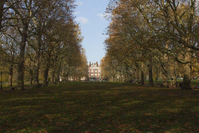 Grönparkslandvy arkivbild