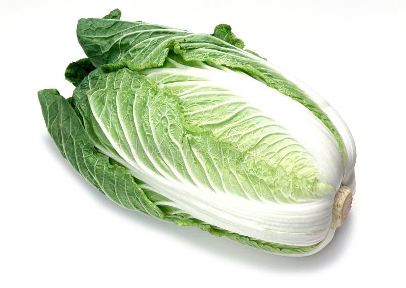 grönsak arkivfoto