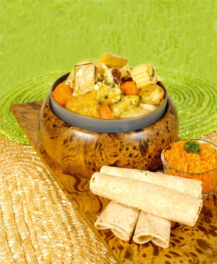 grönsak för 2 soup royaltyfria bilder