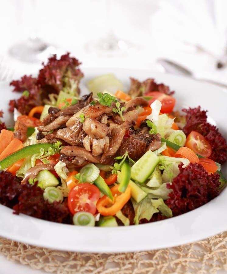 grönsak för champinjonostronsallad royaltyfri bild