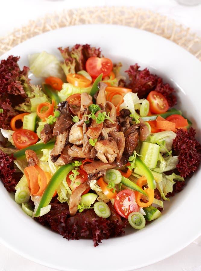 grönsak för champinjonostronsallad royaltyfria bilder