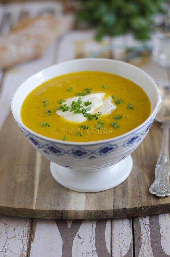 grönsak för soup för fokusmakro grund arkivbilder