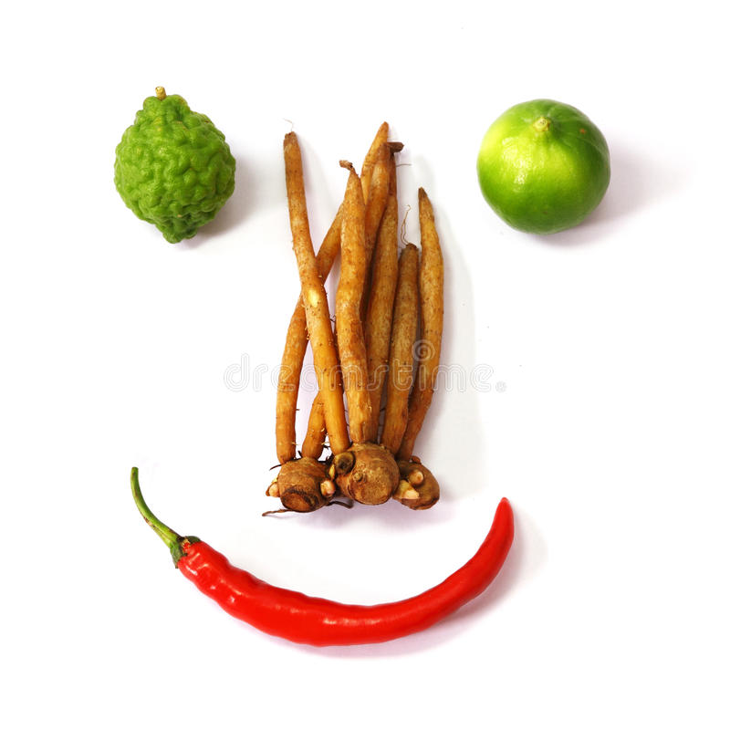 Grönsak och ingredienser arkivfoton