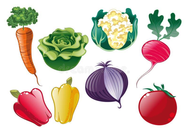 grönsaker vektor illustrationer
