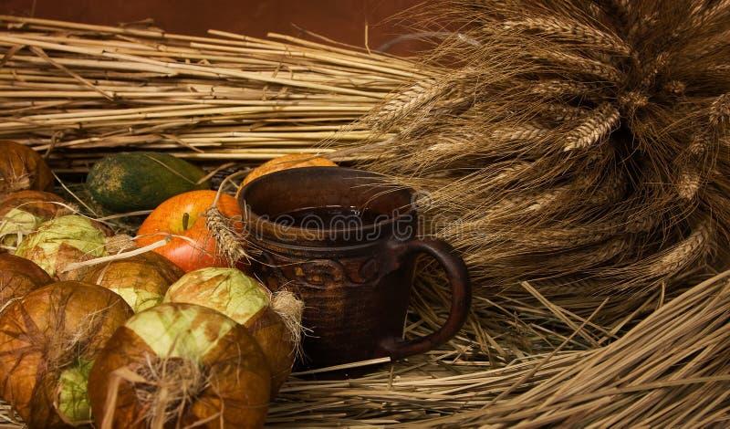 grönsaker för fruktlivstid fortfarande royaltyfri fotografi