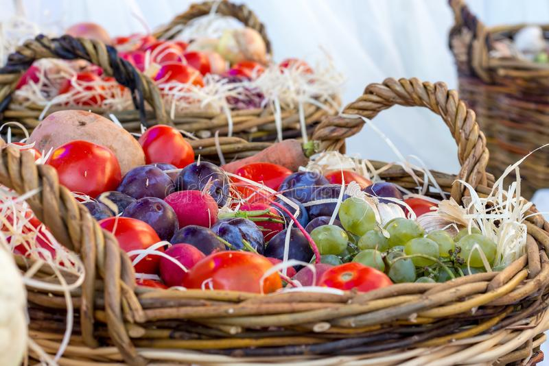 Grönsaker, frukter och bär i en korg på Thanksgiving_ royaltyfria bilder