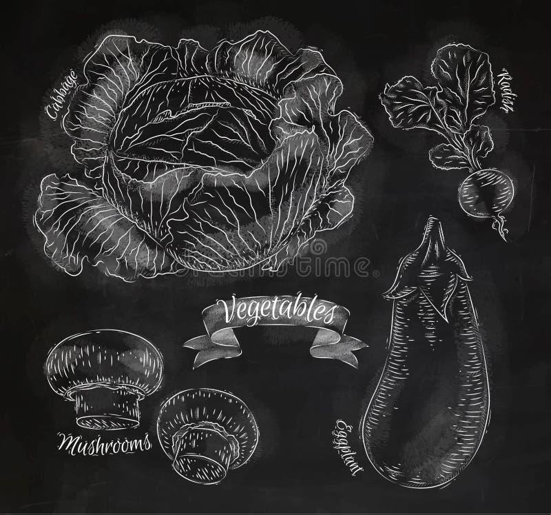 Grönsaker kål, aubergine, rädisor, champinjoner vektor illustrationer