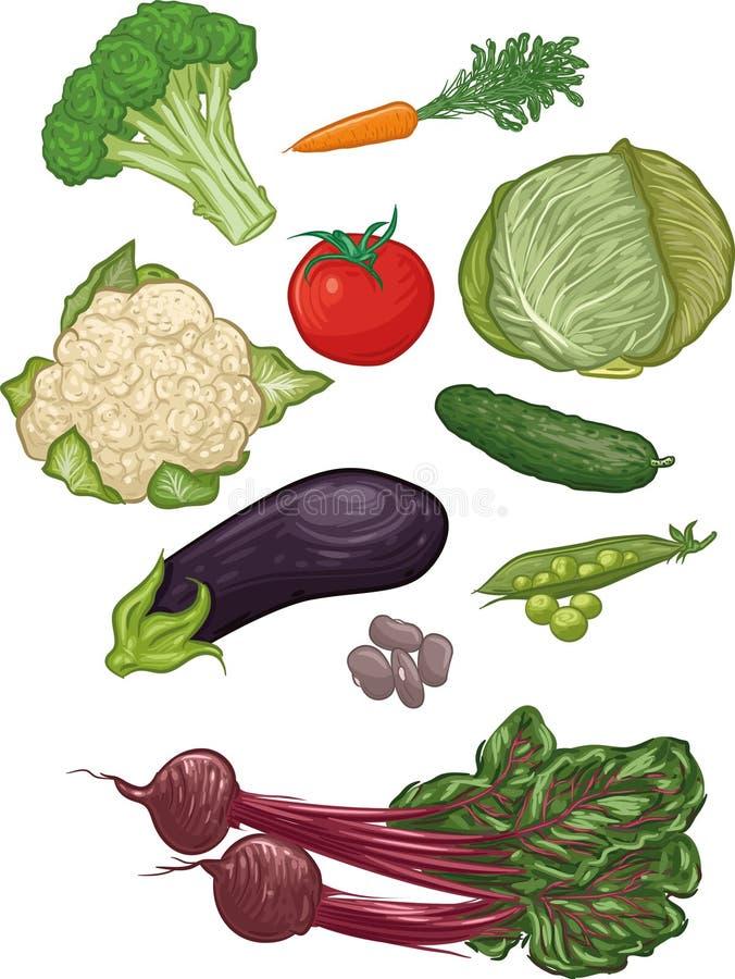 Grönsaker mig royaltyfri illustrationer