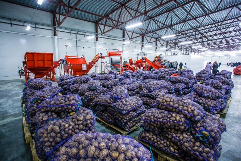 Grönsaker och livsmedel i stort lager arkivfoton