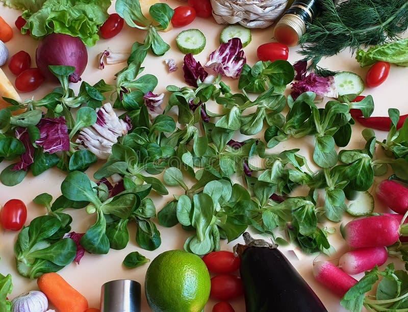 Grönsaker och morötter för gurka för lök för sallad för söt peppar för fruktpaprika gröna olivgröna saltar persiljavitlök royaltyfri bild