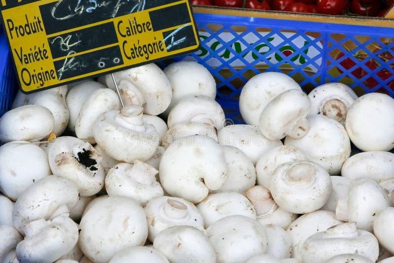 grönsaker på en lokal lantlig marknad i sommarmånaden juli av staden royaltyfri foto