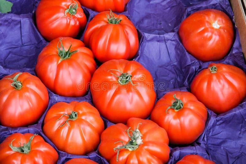 grönsaker på en lokal lantlig marknad i sommarmånaden juli av staden royaltyfri fotografi