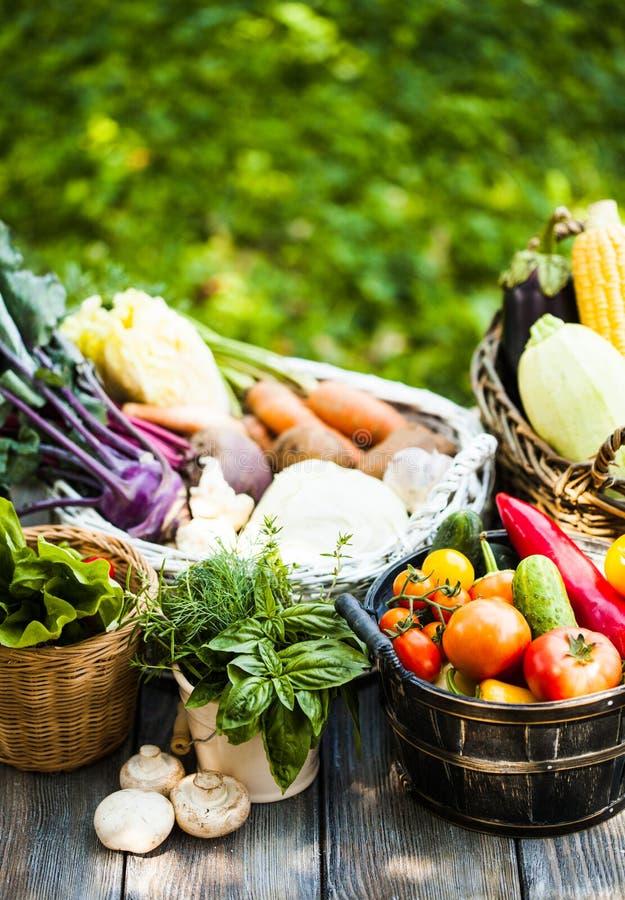 Grönsaker på trätabellen royaltyfri foto