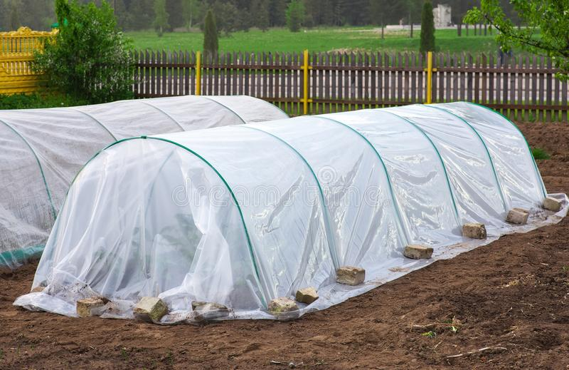 Grönsaklapp med plantor som täckas med spunbond och polyeth royaltyfria bilder
