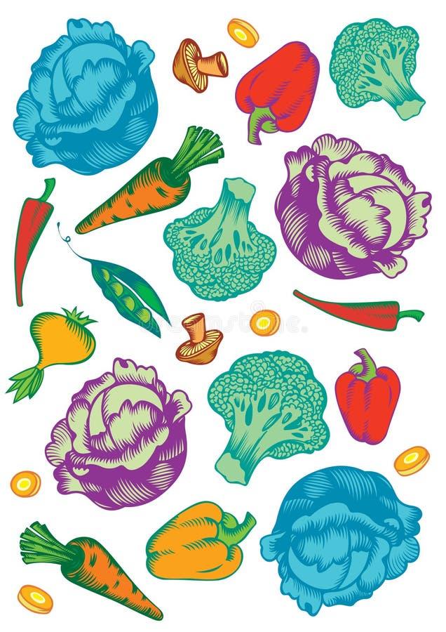 Grönsakmodell vektor illustrationer