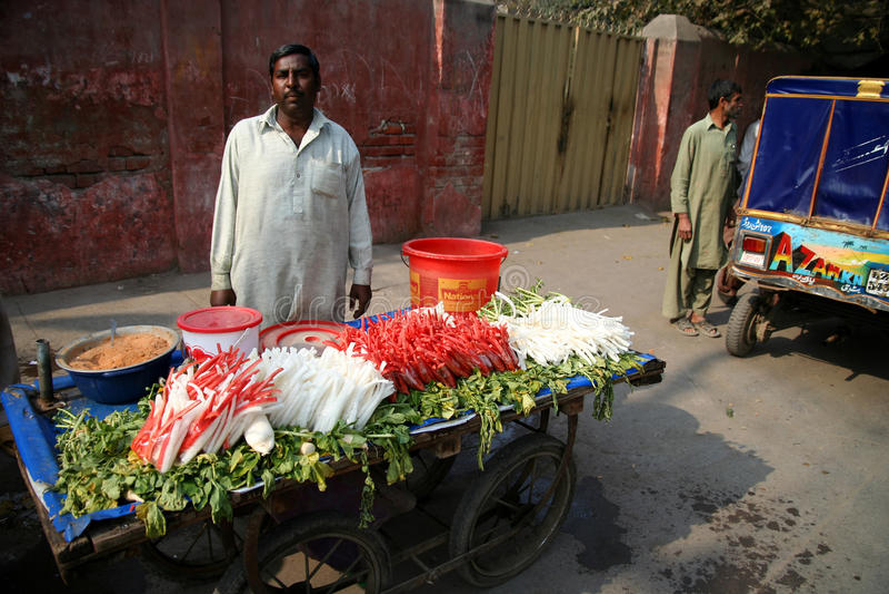 Grönsaksäljare royaltyfria foton
