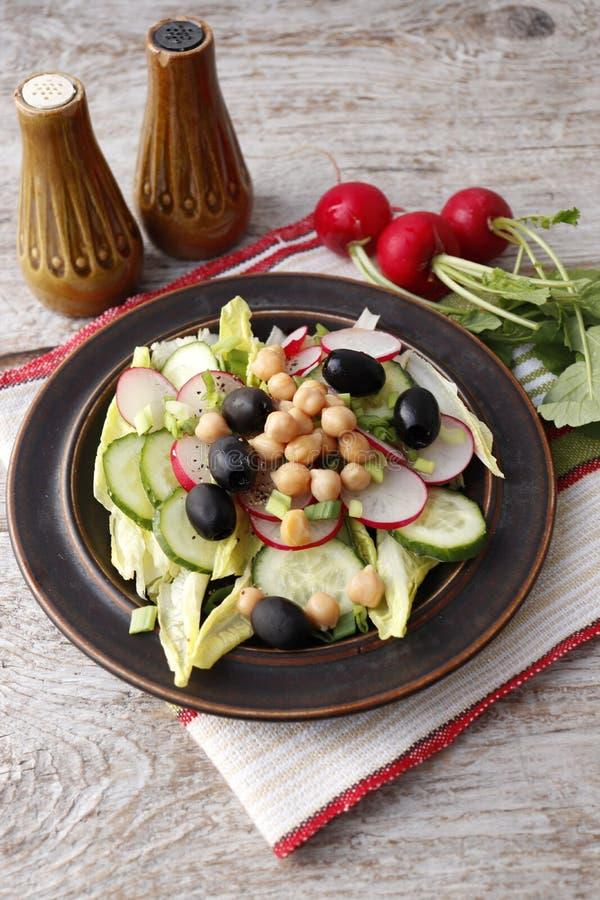 Grönsaksallad med rädisan royaltyfri foto