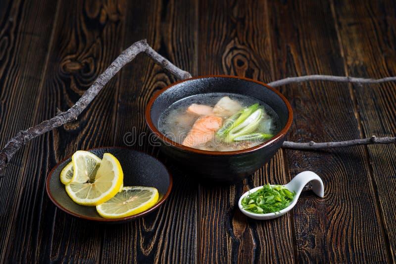 Grönsaksoppa med fisk 2 royaltyfri fotografi