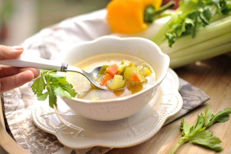 Grönsaksoppa, sommarmat med vitaminer kopiera avstånd royaltyfria foton