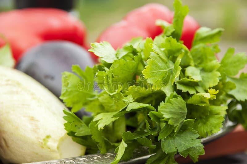 Grönsakstilleben - persilja, aubergine, zucchini och tomater royaltyfri foto