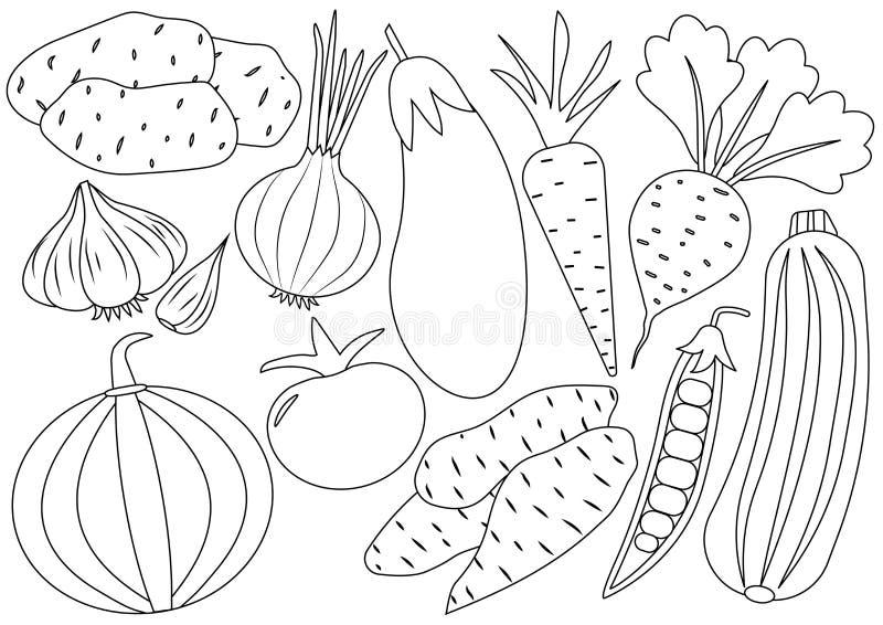 Grönsaktecknad filmuppsättning, symboler för färgläggningdiagram för bok färgrik illustration royaltyfri illustrationer
