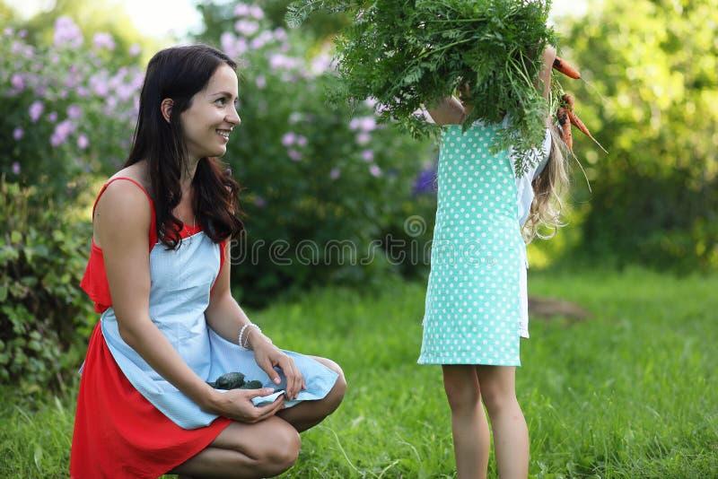 Grönsakträdgård - älskvärd trädgårdsmästare med gruppen av moroten royaltyfria bilder